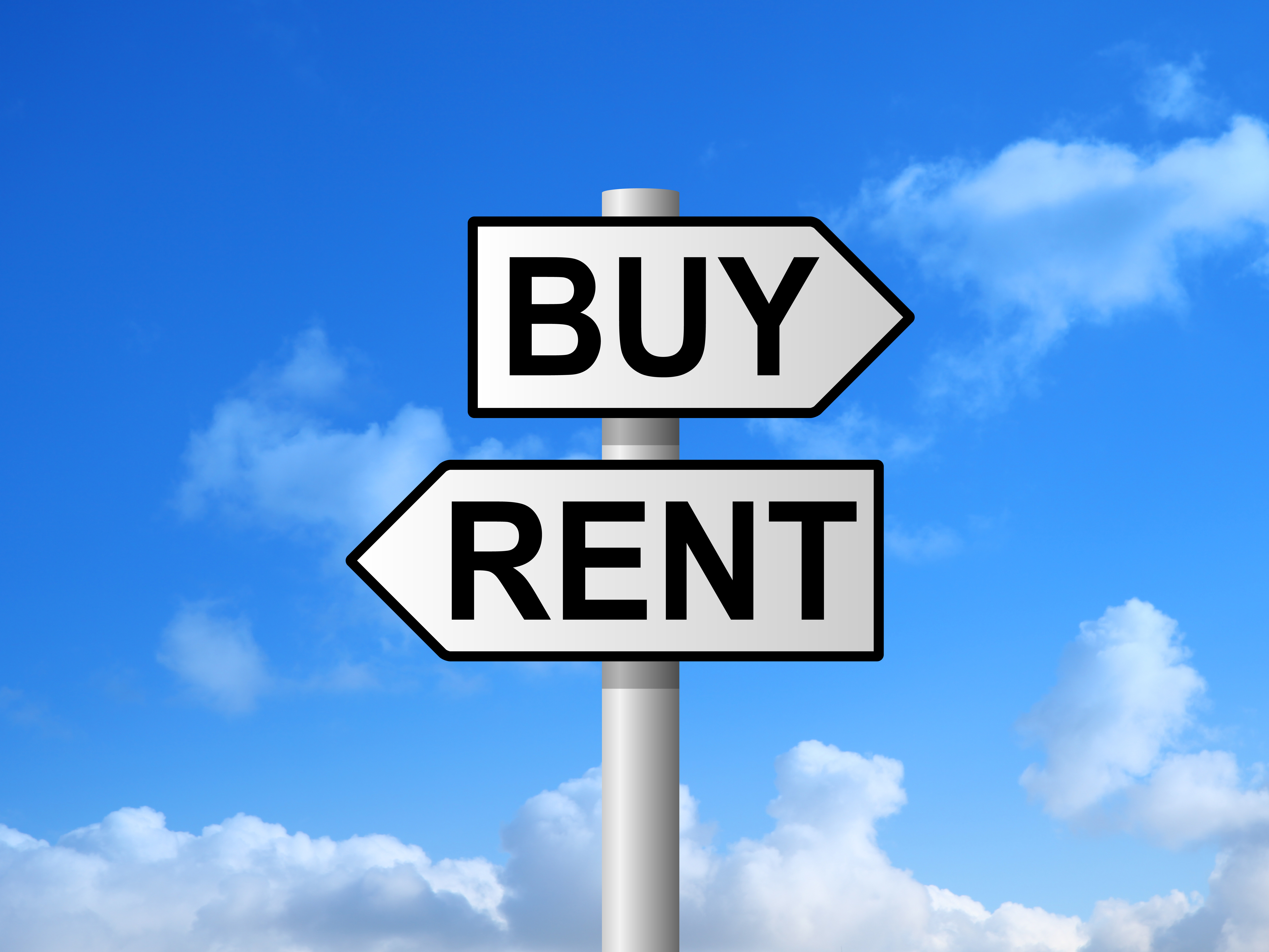 Buy or rent picture